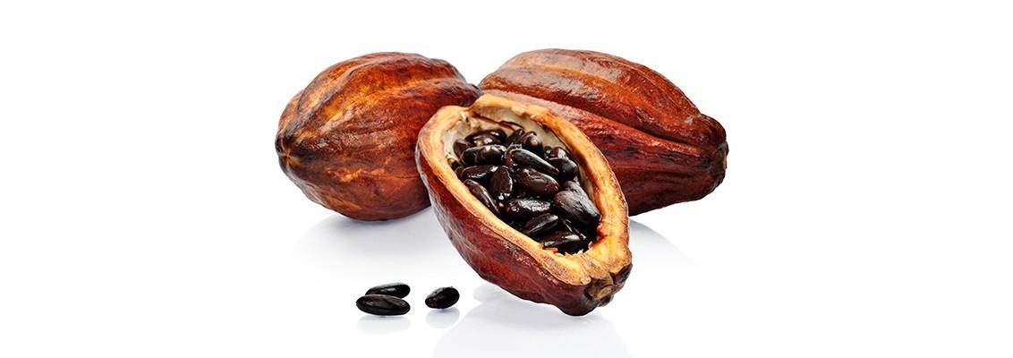 Только цельные и настоящие какао бобы